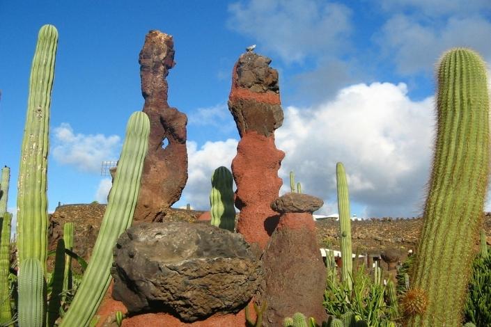 Lanzarote Kakteengarten