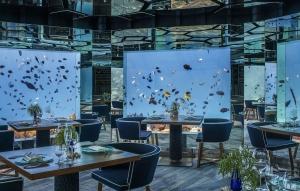 Anantara Kihavah Villas Underwater Restaurant