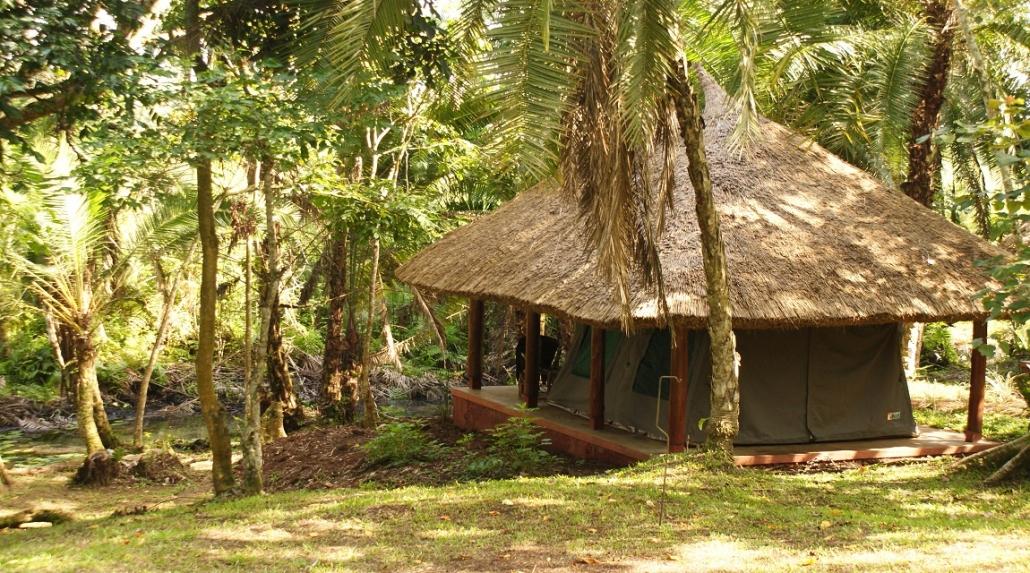 Kibale Forest Camp Safari Tent