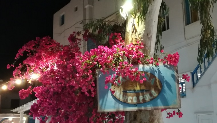 Reisebericht Mykonos Santorin